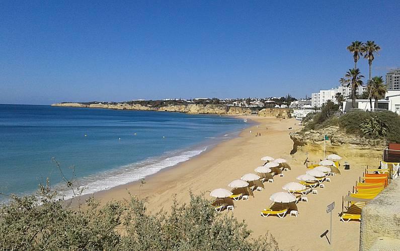 Spacious Algarve-Faro Silves Apartment -