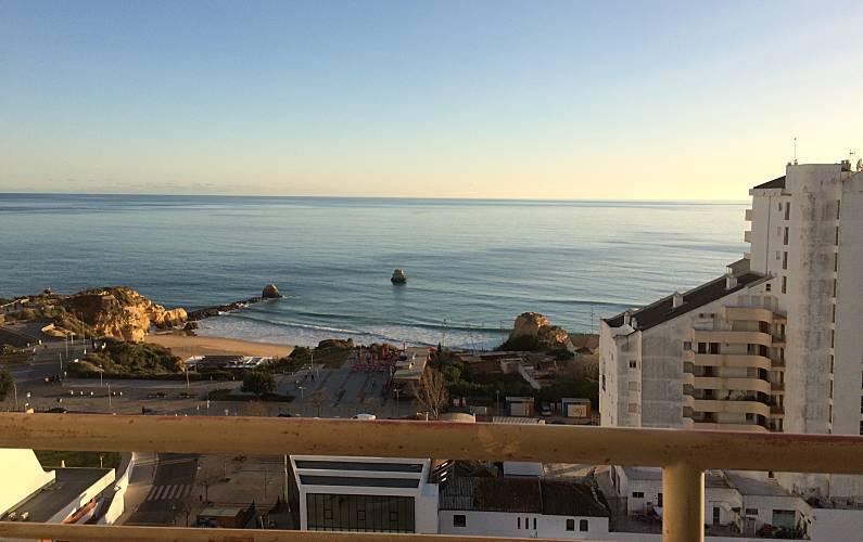 Praia da Rocha, T0 View Sea Swimming Pool Parking Algarve-Faro - Views from the house