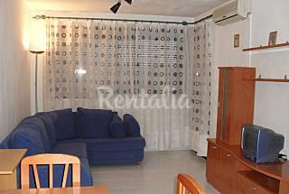 Appartamento in affitto nel Palma Maiorca
