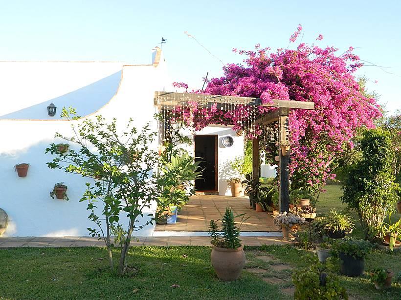 Casa en conil con jardin y piscina cerca del mar conil for Casas con piscina jerez de la frontera