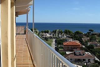 Apartamento para 5 personas a 200 m de la playa Alicante
