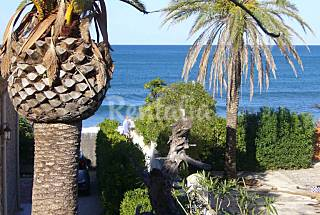Villa de 3 habitaciones con jardín privado Alicante
