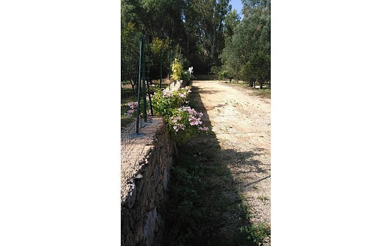 Villa Exterior del aloj. Lecce Gallipoli villa - Exterior del aloj.