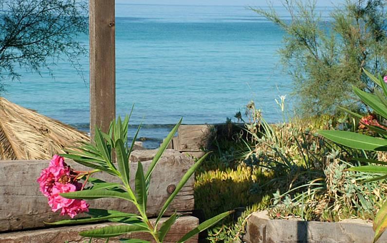 Villa Actividades cercanas Lecce Gallipoli villa - Actividades cercanas