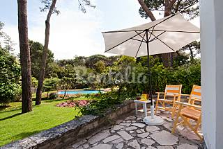 House with luxurious garden and swimming pool Lisbon