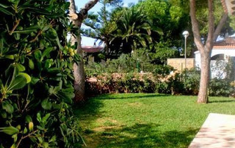 Villa para 6 7 personas a 500 m de la playa cala 39 n bosch for Jardin hormiguita viajera villa bosch