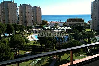 Apartment for rent only 75 meters from the beach Málaga