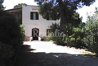 Apartment for 4-5 people only 200 meters from the beach Foggia