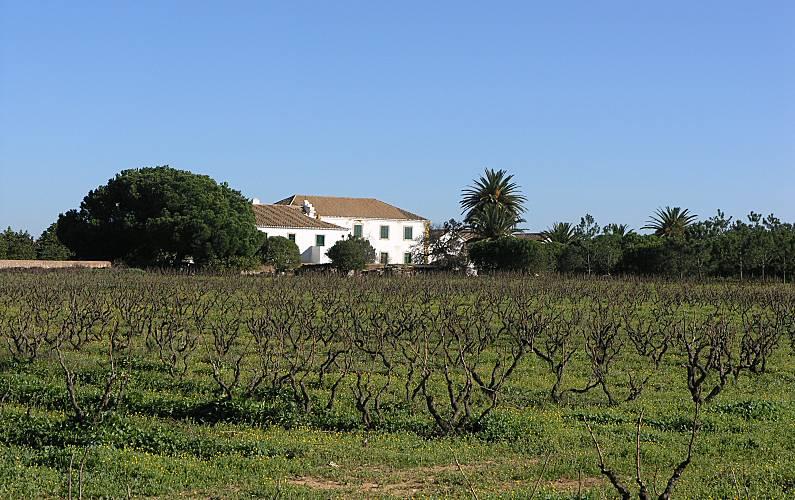 2 Environment Algarve-Faro Silves villa - Environment