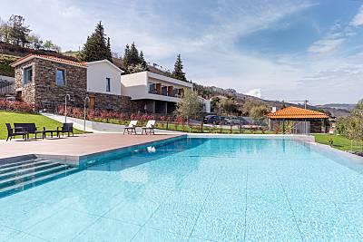 Vivenda com 5 quartos e piscina no Douro Vila Real