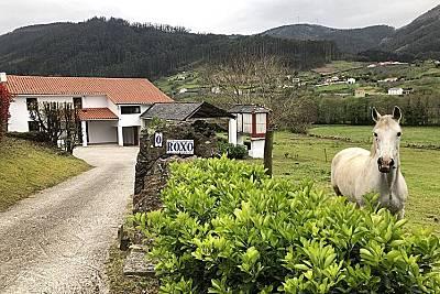 O Roxo, 10 pax  a 8 km playa, relax entre caballos A Coruña/La Coruña
