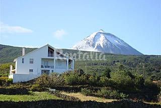 2 Houses for rent only 600 meters from the beach Pico Island