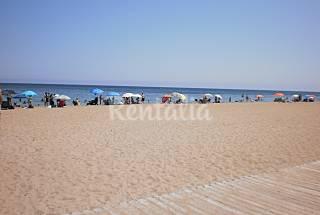 Apartamento de 1 habitación  a 50 m de la playa Alicante