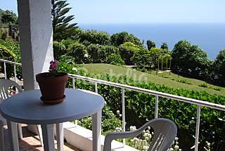 Charming House - 7 km from the beach São Miguel Island