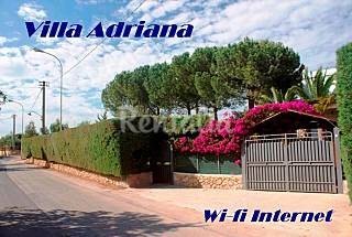 Villa for rent only 300 meters from the beach Syracuse