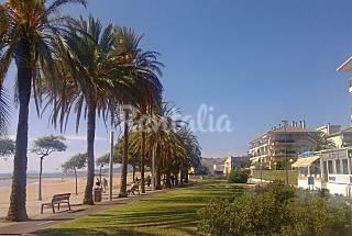 Apto Cambrils 1ª línea playa. 4 plazas+1extra Tarragona