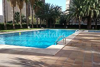 Apartamento Paraíso en Centro Benidorm Alicante