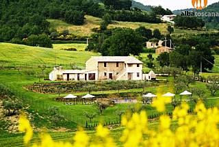 5 delicious apartments with pool in Umbria Perugia