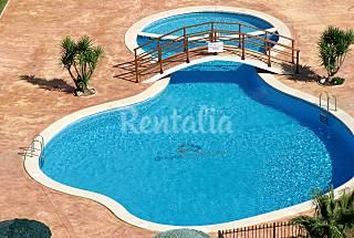 Dos Apartamentos Jardin de Benidorm 4 - 6 personas Alicante
