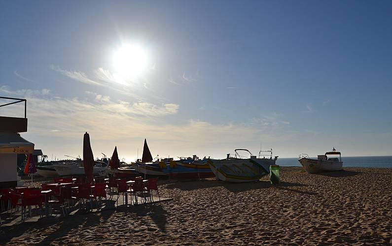 Unique Environment Algarve-Faro Silves Apartment - Environment
