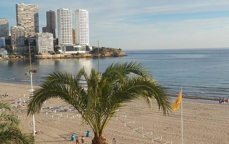 5 apartamentos en alquiler en 1a l nea de playa benidorm alicante costa blanca - Apartamentos de alquiler en benidorm baratos ...