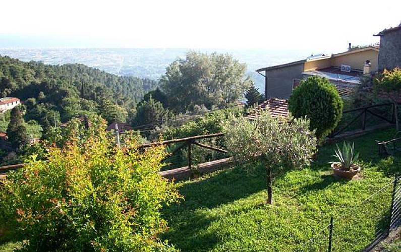 FRA Giardino Lucca Camaiore Casa di campagna - Giardino