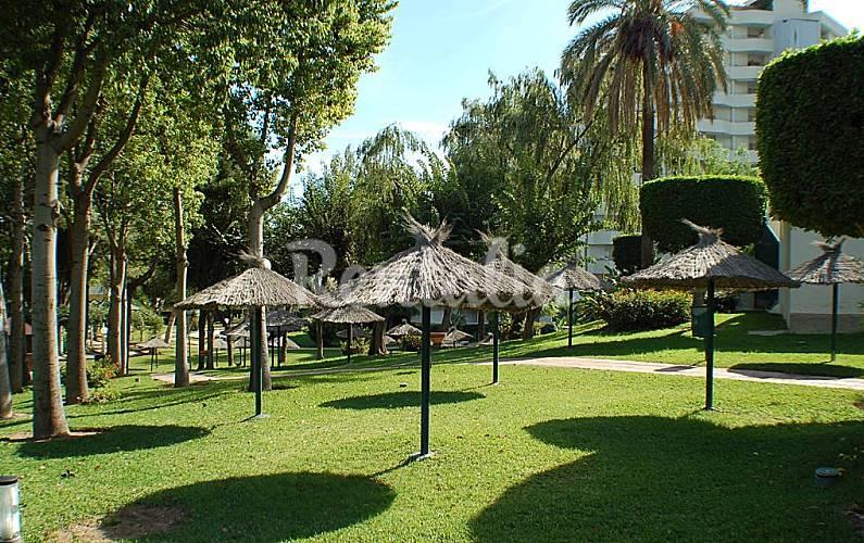 Apartment Garden Málaga Benalmádena Apartment - Garden