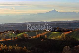 3 Appartamenti in affitto - Piemonte