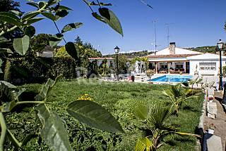 Una casa con encanto:disfruta, descansa, deleitate Madrid