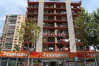 Ideal jovenes, zona de marcha - 5 apartamentos Alicante