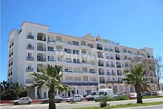 Girasoles Ibiza