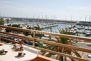 Apartment for 4 people on the beach front line Alicante