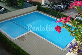 2 Apartments for 2-3 people only 100 meters from the beach Venice