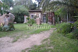 Casa en alquiler a 400 m de la playa Olbia-Tempio
