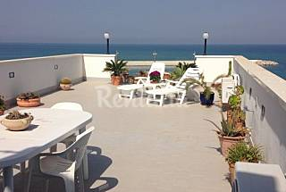 Apartment with terrace at 200 m from the beach Palermo