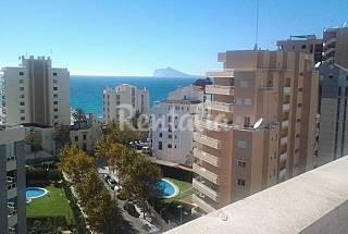 Peñon Apto. 1 hab. más sofacama 150 m de la playa Alicante