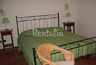 Apartamento para 4-5 personas a 300 m de la playa Grosseto
