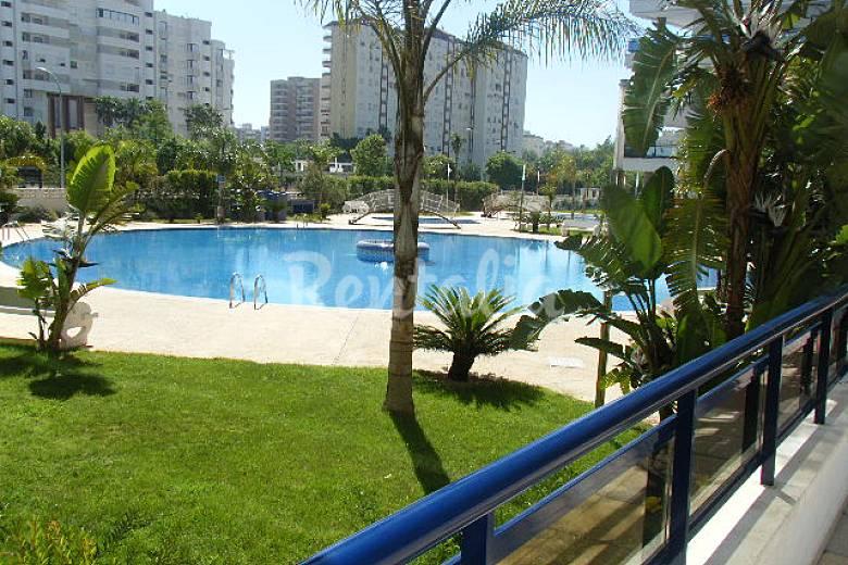 Apartamentos en gandia playa eden rioja salinas grau i for Piscinas publicas valencia