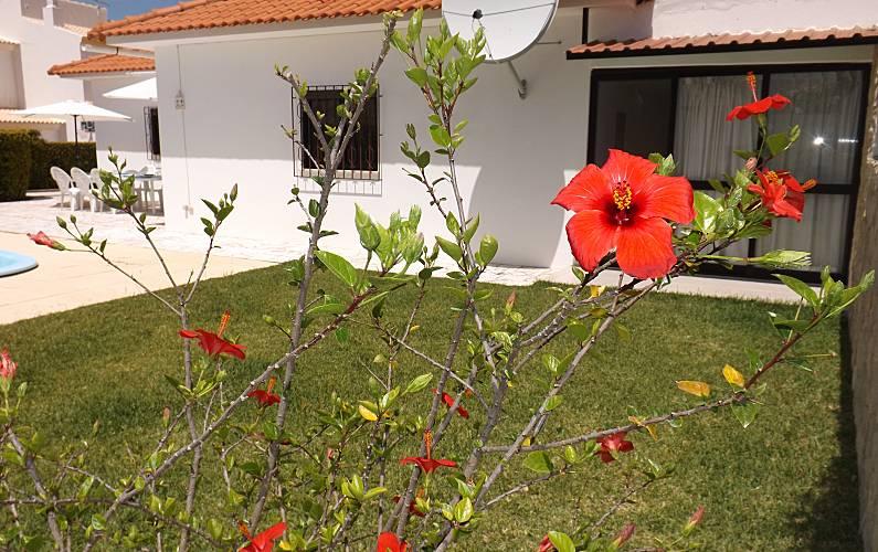 V4 Jardim Algarve-Faro Albufeira vivenda - Jardim