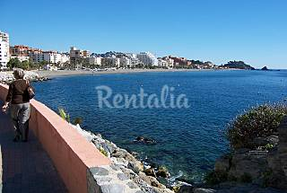 Apartment for 2-3 people only 50 meters from beach Granada