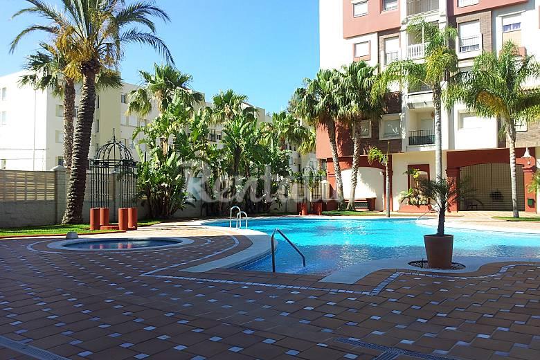 Apartamento en alquiler a 100 m de la playa motril granada costa tropical - Apartamentos en granada playa ...