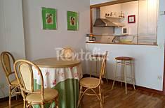 Cálido y céntrico apartamento de montaña Rioja (La)