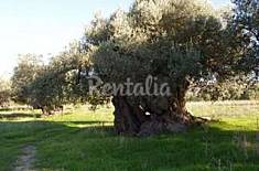 House for rent 4 km from the beach Agrigento