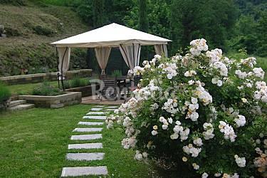Indipendent Garden Massa and Carrara Tresana Countryside villa