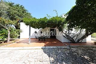 2 Villas en alquiler a 2 km de la playa Brindisi
