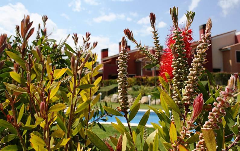 Serenity Swimming pool Tarragona Mont-roig del Camp House - Swimming pool