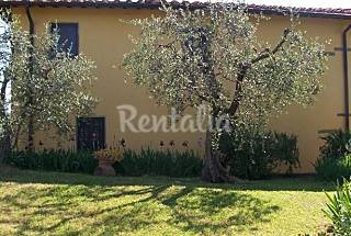 4 Apartments with swimming pool Florence