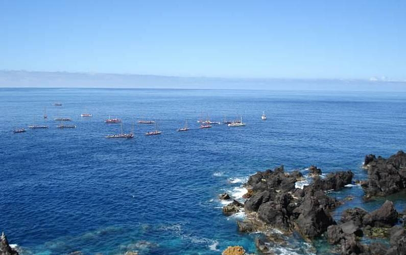 2 Nearby activities Pico Island Lajes do Pico homes - Nearby activities