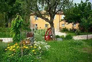 Appartamento in casa di campagna per 4-5 persone  Pesaro e Urbino