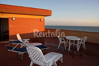 Apartment for rent on the beach front line Rome